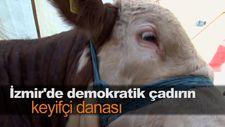 İzmir'de demokratik çadırın keyifçi danası