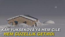 Kar Yüksekova'ya hem çile hem güzellik getirdi