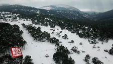 Spil Dağı Milli Parkı'nda karne yoğunluğu