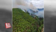 Mersin'deki orman yangınları büyümeden söndürüldü