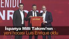 İspanya Milli Takımı'nın yeni hocası Luis Enrique oldu