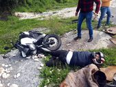 Alkollü motosiklet sürücüsü kaza yaptı