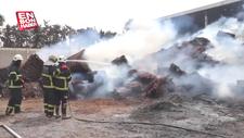 Adana'da pamuk yağı fabrikasında yangın çıktı