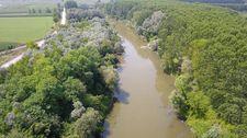 Atık sularla kirlenen Sakarya Nehri