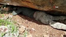 Siirt'te toprağa gömülü PKK'ya ait mühimmat ele geçirildi