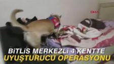 Bitlis merkezli 4 kentte uyuşturucu operasyonu