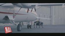 3 tonluk uçağı çekebilen robot köpek: HyQReal