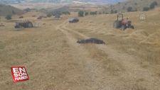 Sivas'ta freni tutmayan traktörden düşen kişi öldü