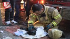 İtfaiye, anne kedi ve yavrularını yangından kurtardı