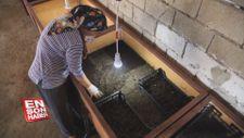 Solucan gübresi üretimi kadın girişimcinin geçim kapısı oldu