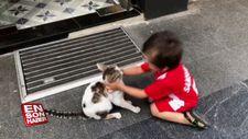 Sevimli ufaklığın kedi sevgisi