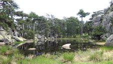 Eğrigöz Dağı'nın zirvesindeki doğal gölet