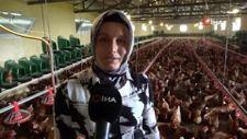 Ordu'da eğitim alarak yumurtacılığa başladılar şimdi ihraç ediyorlar