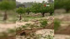 Bursa'da dolu yağışı mahsullere zarar verdi