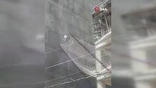 Şanlıurfa'da, çatı katında mahsur kalan köpek 7'nci kattan atladı