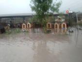 Ankara'da hayvan barınağı sular altında kaldı