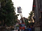 Düzce'de budamak için çıktığı ağaçta mahsur kaldı