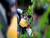Bakırköy'de ağaç devrilmesi sonucu bir kişi yaralandı
