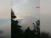 Tarsus'ta orman yangınında 10 hektarlık alan zarar gördü