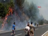 Muğla'da yangın çıkan fabrikaya 12 milyon lira ceza