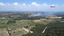 Bozcaada'da ormanlık alanda yangın