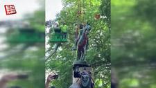 ABD'de ırkçılık karşıtı gösterilerin hedefi olan generallerin heykelleri kaldırıldı