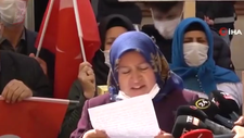 Diyarbakır annelerinden Ali Babacan'ın Deva'sına tepki