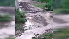 Gümüşhane'de 10 dakika süren yağmur sele neden oldu