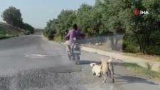Mersin'de köpeği, elektrikli bisikletinin arkasına bağlayıp sürükledi