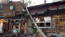 Bursa'da tarihi çınarın 9 metrelik dalı, kafenin üstüne düştü