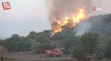 Manisa'da ormanlık alanda 6 farklı noktada yangın