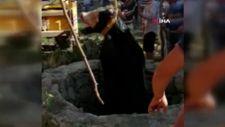 Muğla'da kurbanlık dana kuyuya düştü