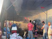 Mersin'de ahırda çıkan yangında 13 büyükbaş hayvan öldü
