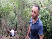 Kocaeli'de uçurumdan yuvarlanan büyükbaş hayvan, düştüğü yerde kesildi