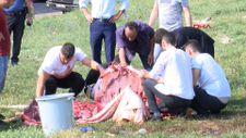 Sultangazi'de kaçak kesim yapanlara ceza