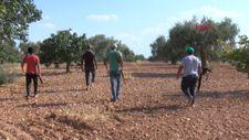Gaziantep'te bekçiler, silahla Antep fıstığı nöbeti tutuyor