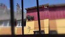 Adana'da kurbanlık keçi çatıdan atladı