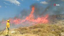 İzmir'de izmarit yangını 18 dönümlük araziyi küle çevirdi