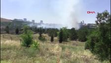 Ankara'da Atatürk Orman Çiftliği arazisinde yangın