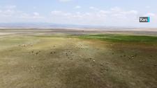 Koruma altına alınan Kuyucuk Gölü kurudu
