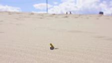 Sahildeki izmaritleri toplayan robot: BeachBot