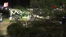 Antalya'da kır düğününde ağacın devrilmesi sonucu 10 kişi yaralandı