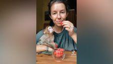 Sahibiyle birlikte karpuz yiyen maymun