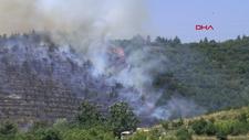 Kocaeli'deki 30 dönüm ormanlık alanda yangın