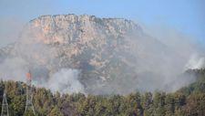 Adana'da 2 ilçede orman yangınına müdahale sürüyor