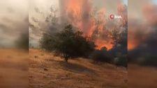 Hatay'da bahçe yangını kontrol altına alındı