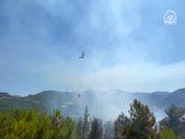 Türkiye'de yangınlara havadan ve karadan müdahale ediliyor