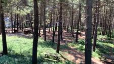 İstanbul'da mesire alanları boş kaldı