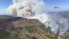 Mersin'deki orman yangınları kontrol altına alındı