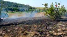 Balıkesir'de elektrik teline çarpan atmaca, arazi yangınına sebep oldu